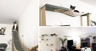 cat wall furniture cat vertical space 101 the ultimate guide