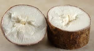 cuisiner le manioc comment cuisiner le manioc nos conseils