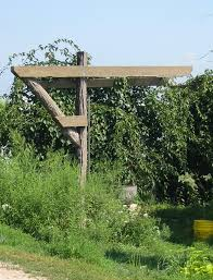 free trellis plans free arbor trellis plans plan old fashioned how build bench garden