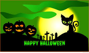 halloween background images happy halloween cat funny cat u0026 dog pictures