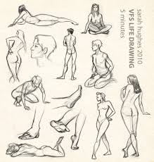 female body anatomy drawing how to draw a female body online