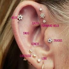 15 awesome ear piercings idea for pop