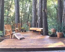 best 25 deck around trees ideas on tree deck tree