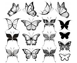 butterfly designs clipart library