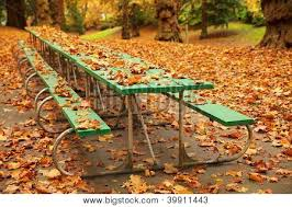 long autumn green picnic table image u0026 photo bigstock