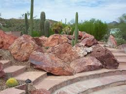 desert landscaping ideas for front yard amazing front yard
