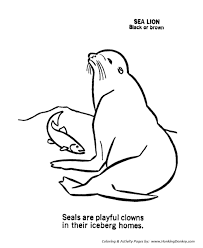 wild animal coloring pages seal coloring page and kids activity