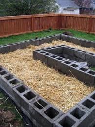 my raised bed garden made from cinder blocks gardening
