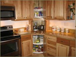 Kitchen Cabinet Spice Organizers by Kitchen Interesting Kitchen Cabinets Design Ideas With Lazy Susan