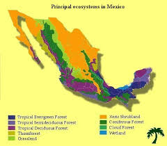 regions of mexico map mexican ecosystems