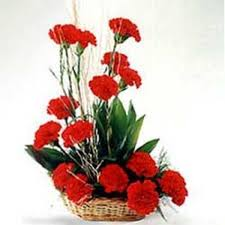 Red Carnations Arrangement Of 15 Red Carnations Myflowergift
