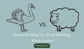 Wool Duvet Insert Down Vs Wool Bedding Which Is Better Bedrooms U0026 More Seattle