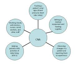 Sample Resume For Cna Job by Cna Job Duties Resume Example Certified Nursing Assistant Resume