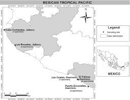 Guerrero Mexico Map by Morphological And Molecular Characterization Of Hapalospongidion