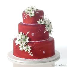 wedding cake kit wedding cake kit best cakes images on and candies bitearn site