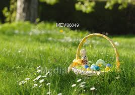 easter basket grass stock photo easter basket in field of grass image mev86049