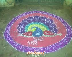 sankranthi muggulu and mehandi designs peacock muggulu