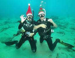 christmas island tourism association christmas island blog so