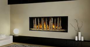 contemporary fireplace insert brucall com