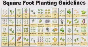 Vegetable Garden Layout Guide Free Printable Garden Planner Sheets To Get A Copy Of This Guide