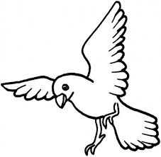 dove bird coloring page for kids animal coloring pages of