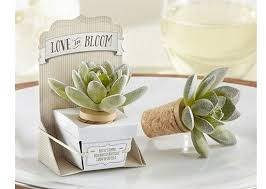 succulent wedding favors diy succulent wedding favors wedding favor discount