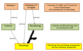 Chemistry In Anatomy And Physiology Lavc Biology Courses And Their Sequences Los Angeles Valley College