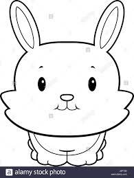 baby bunny black and white stock photos u0026 images alamy