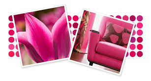 Krylon Transparent Spray Paint - spray paint color families pink spray paint krylon