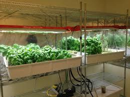 hydroponic herb garden indoor garden ebay amazoncom smart