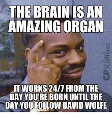 It Works Memes - the brain is an amazing organ it works 247 from the day youre