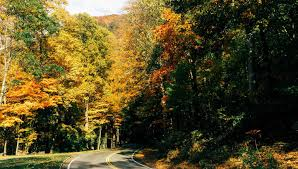 Tennessee nature activities images Experience tennessee outdoor leisure activities tn vacation jpg