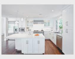 Shiny White Kitchen Cabinets Kitchen Cool High Gloss White Kitchen Cabinets Decor Idea