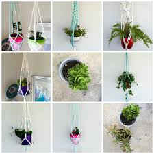 the perfect way to hang indoor plants