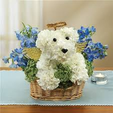 go flowers all dogs go to heaven 1 800 flowers 4 gift seattle
