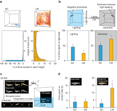 dynamic plasticity in phototransduction regulates seasonal changes