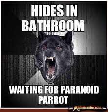 Crazy Wolf Meme - insanity wolf hides in bathroom general humor pinterest