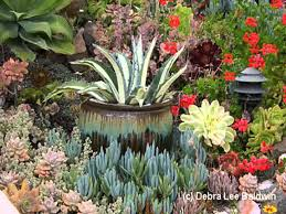 Home Garden Design Youtube Succulent Garden Design Garden Design Ideas