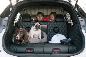 nissan rogue tow package nissan transforms crossover into a dog sanctuary motor trend