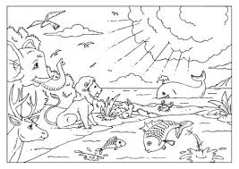 Bible Creation Coloring Pages coloring pages of bible creation story sunday school