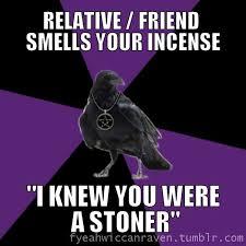 Search Memes - wiccan raven meme google search wiccan memes pinterest