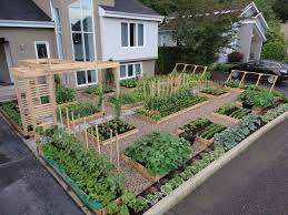 small front yard for vegetables and flowers garden as well as
