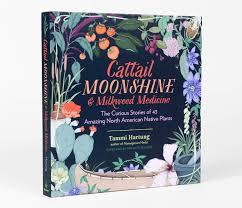 american native plants tammi hartung cattail moonshine u0026 milkweed medicine at