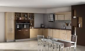 couleur magnolia cuisine cuisine ixina couleur magnolia cuisine idées de décoration de