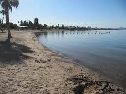 Arizona beaches images Lake havasu city arizona beach beach treasures and treasure beaches jpg