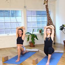 Home Yoga Routine by Yoga Poses U0026 Positions Free Yoga Exercises For Beginners Or