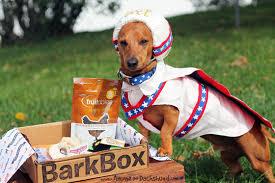 Weiner Dog Halloween Costumes Evel Knievel Ammo Dachshund U0027s Halloween Costume Dog