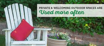 Backyard Privacy Trees How To Choose The Best Privacy Trees Privacy Trees For Yard