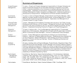 career summary statement exles accounting software resume exles summary statement of inside professional exle