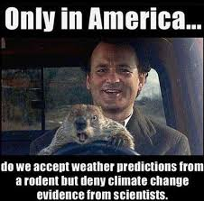 Meme Source - put me like 盞 no one can deny a source like punxsutawney phil